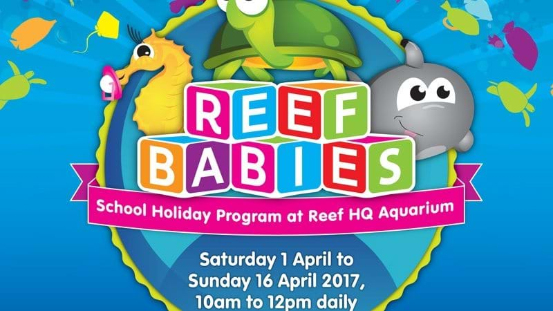 Article heading image for Reef Babies at Reef HQ these holidays!
