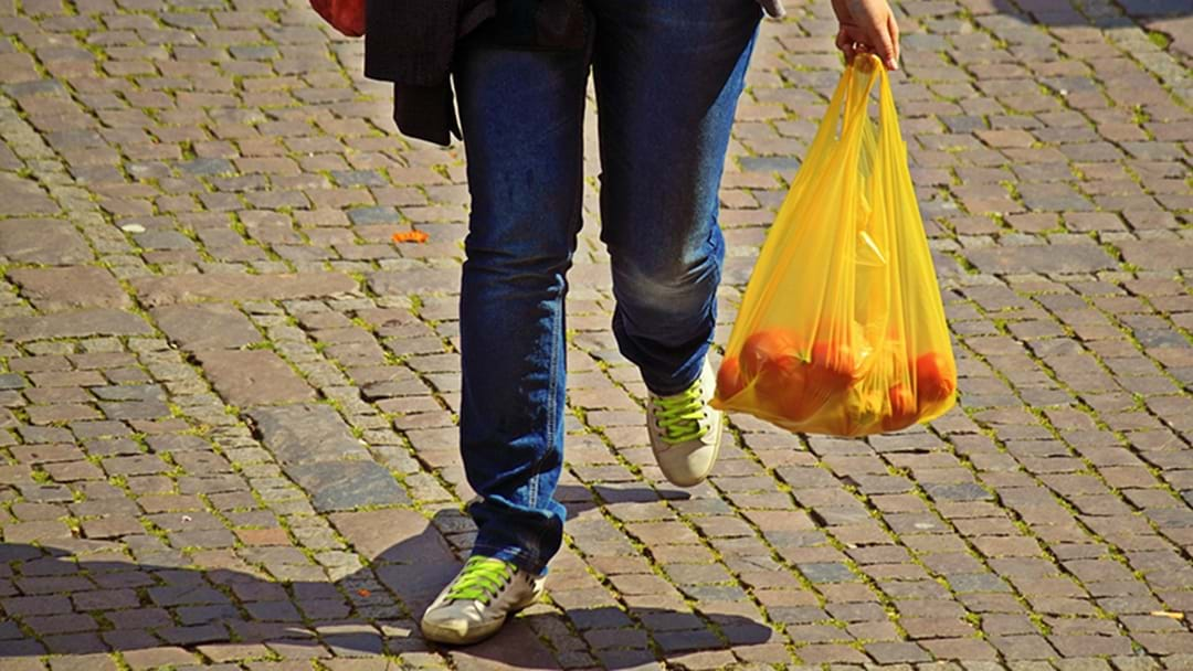 Should We Ban Plastic Bags In Victoria?