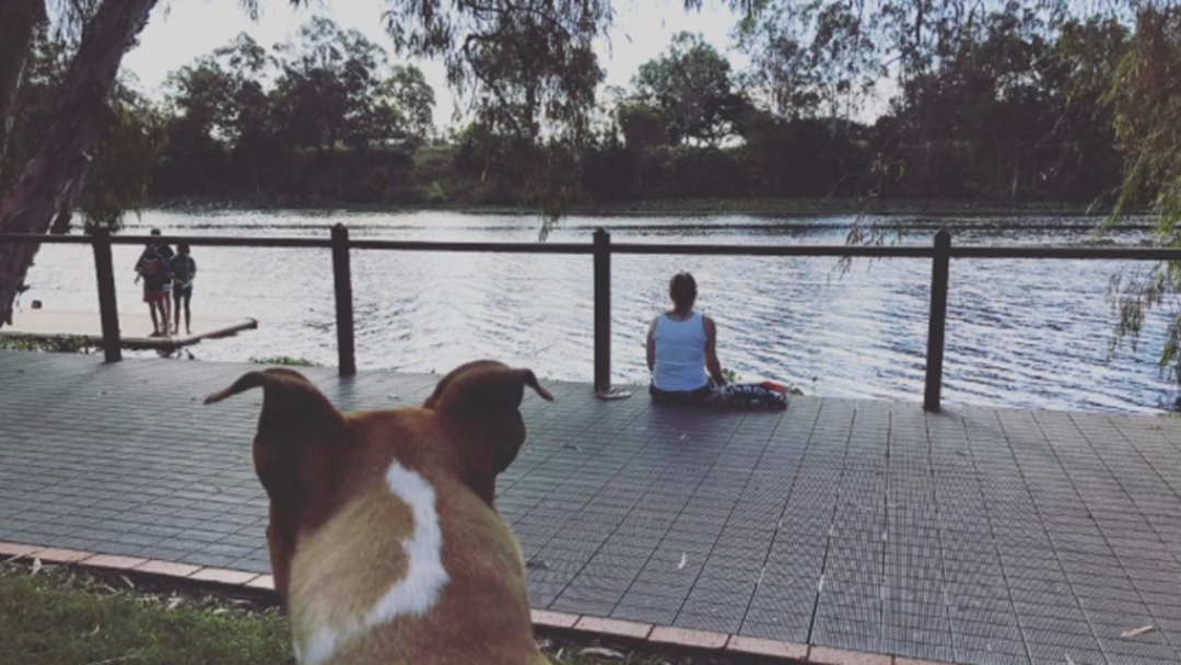 The Townsville Spot Where You Can Chill AND Feed Turtles