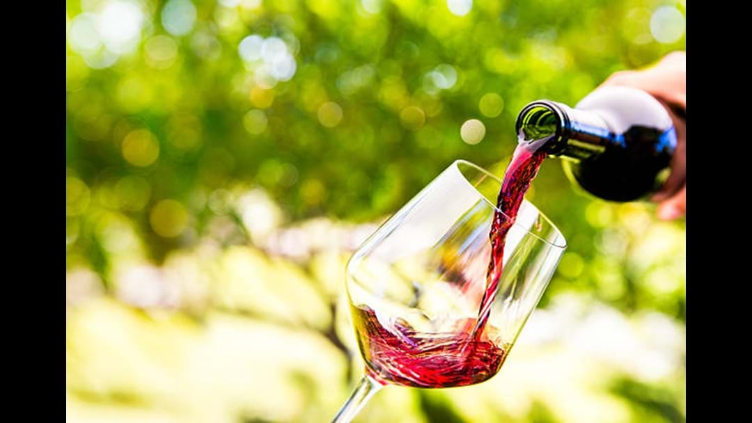The Five Best Wineries Darling Downs and Surrounds