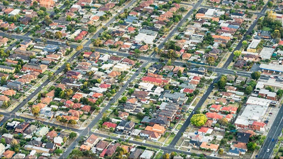 These Melbourne Suburbs Have The Worst Termite Infestation Problems
