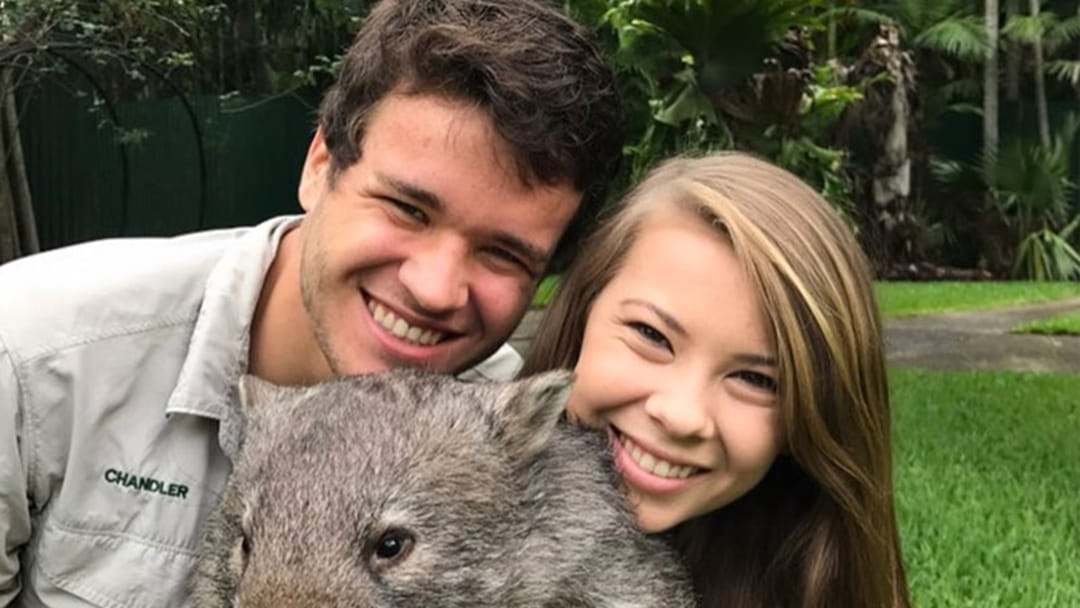 Bindi Irwin & Chandler Powell Just Won Halloween With Their Adorable Couple's Costume