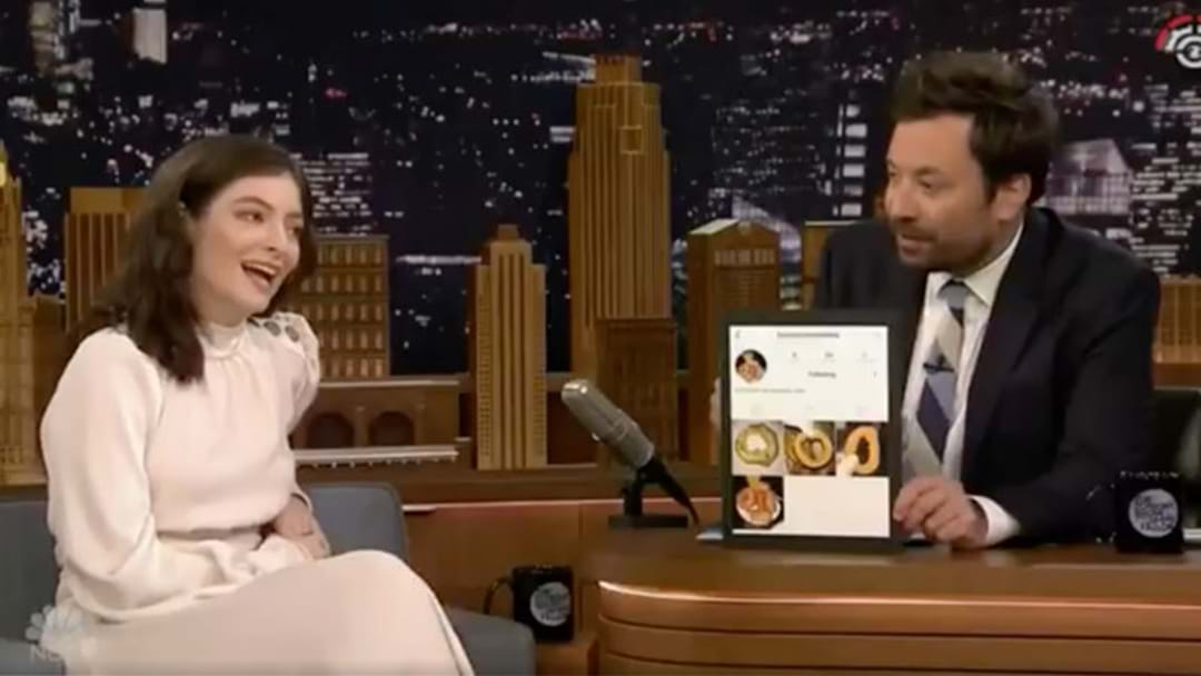 CONFIRMED: Lorde DID Have A Secret Instagram Account About Onion Rings!