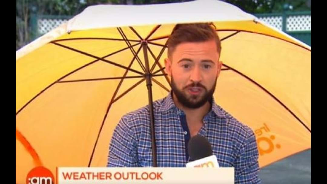 Weatherman Literally Blown Away On Live TV