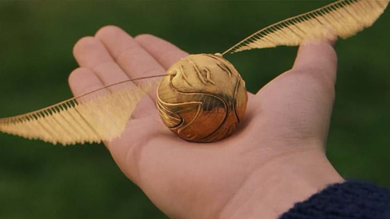 Article heading image for This Guy Proposed With A Golden Snitch And We Are Not Okay