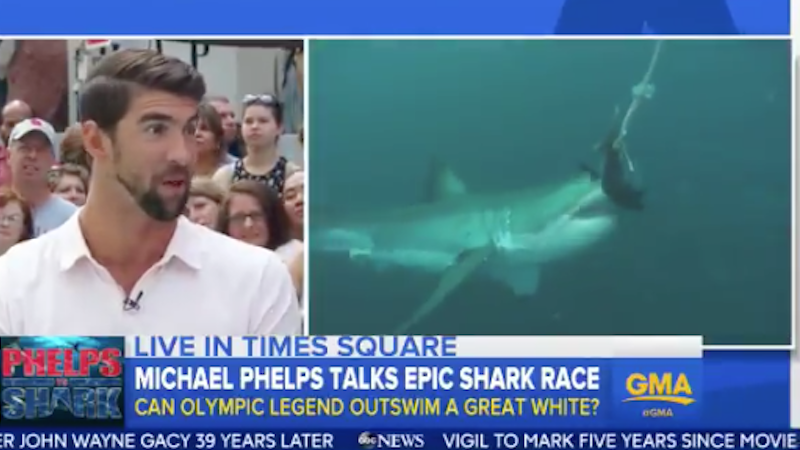 Michael Phelps defeats/loses to shark in epic race