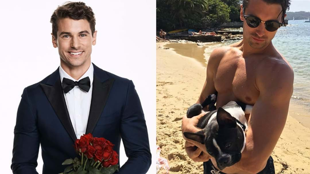 Here Are 7 Shirtless Pics To Remind You How Hot Matty J Is!
