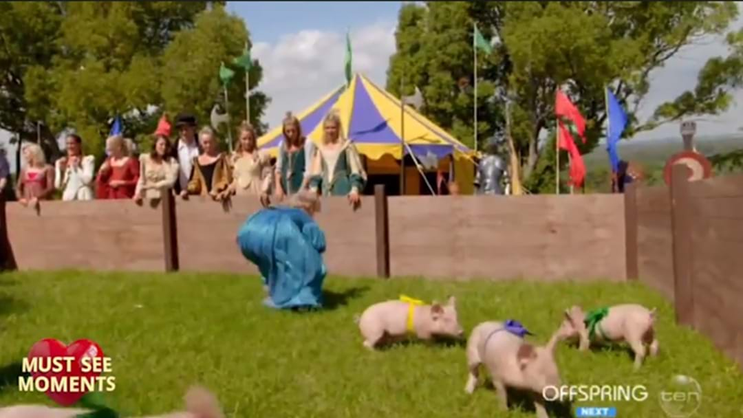 Producers Defend 'The Bachelor' Pig Challenge After Australia Was Far From Impressed