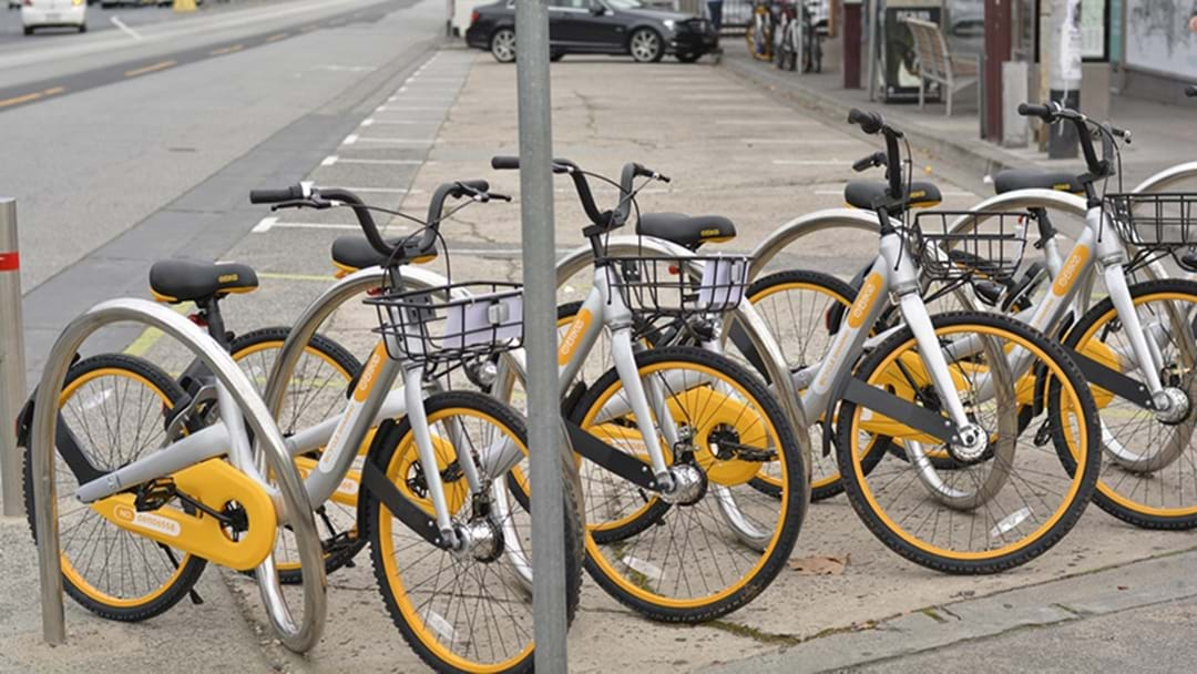 Melbourne's Lord Mayor Declares War On oBikes