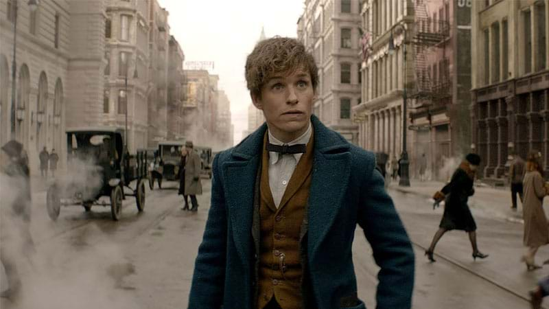 Article heading image for Did You Miss These Surprise Cameos In The NEW Fantastic Beasts Trailer?!