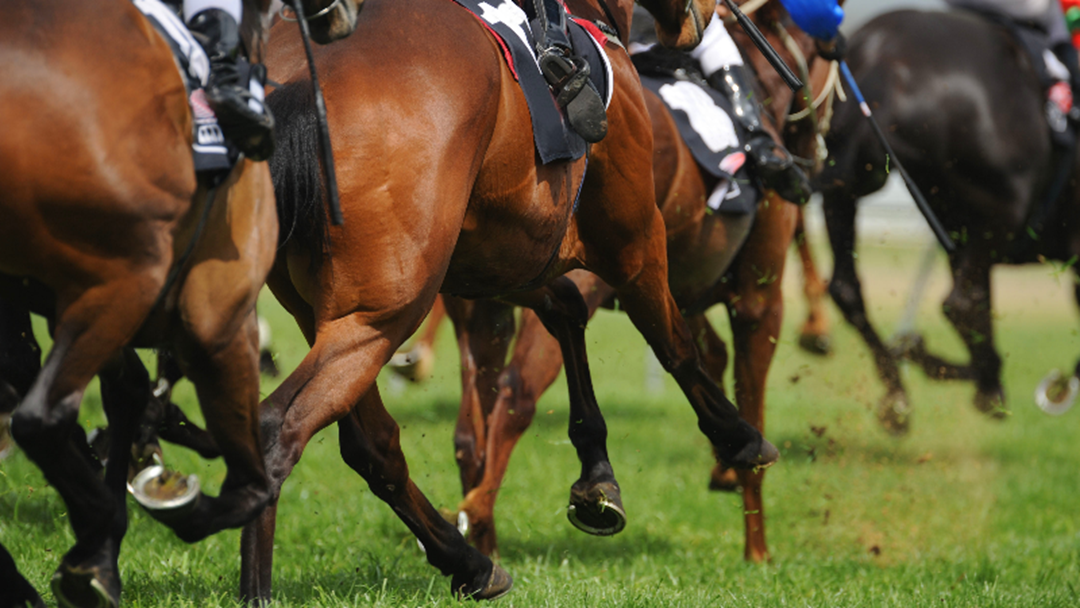 Dederang Picnic Races Cancelled