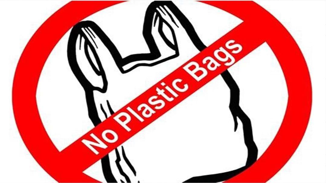 Nanango MP Deb Frecklington Gets Behind Banning Plastic Bags