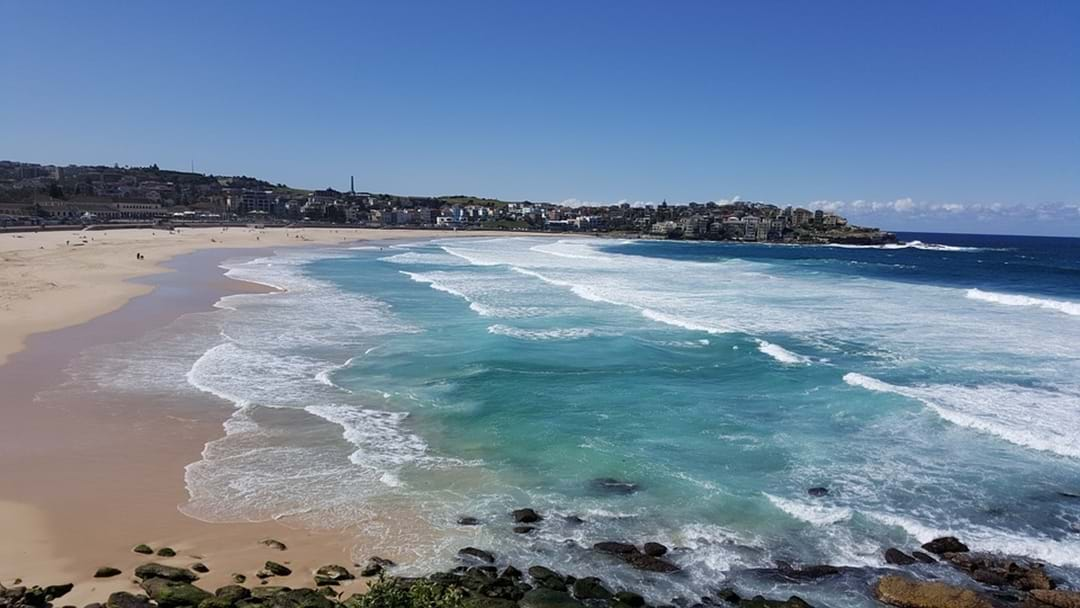 Bondi Beach Has Been Closed Urgently
