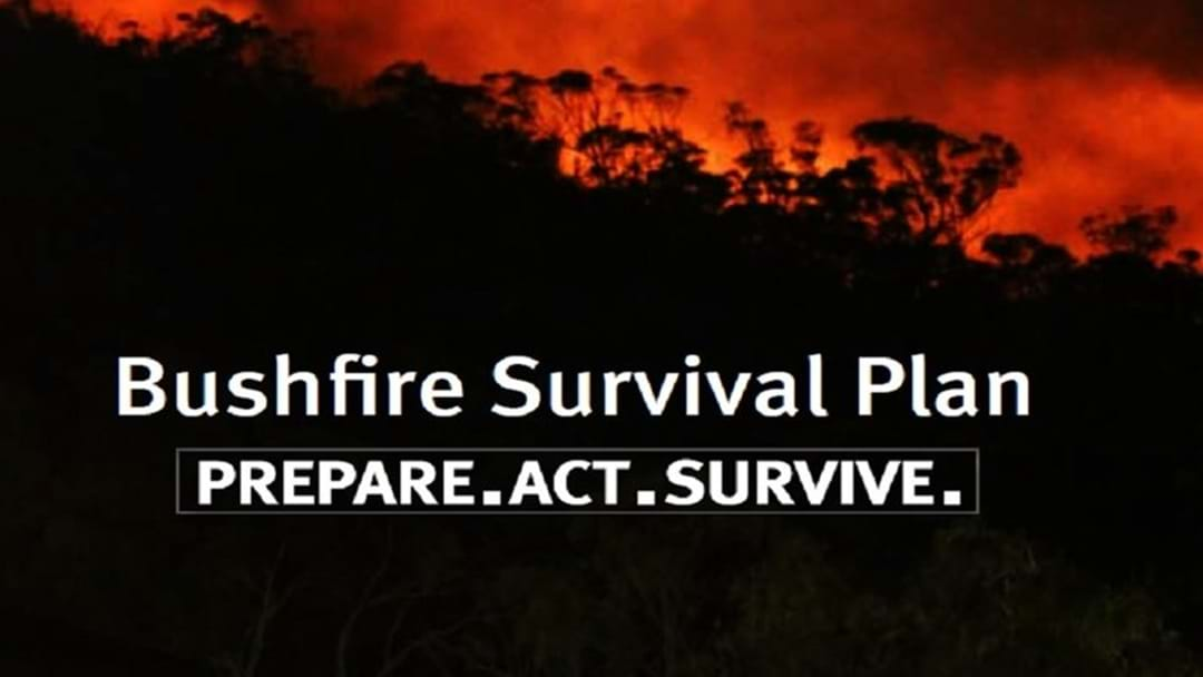 How You Need To Prepare For Townsville Bushfires