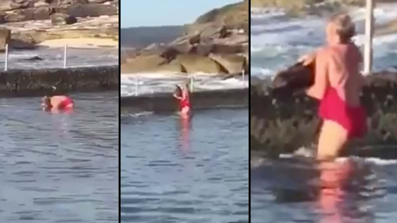 Footage Captures Woman Wrangling And Rescuing A Shark In Cronulla