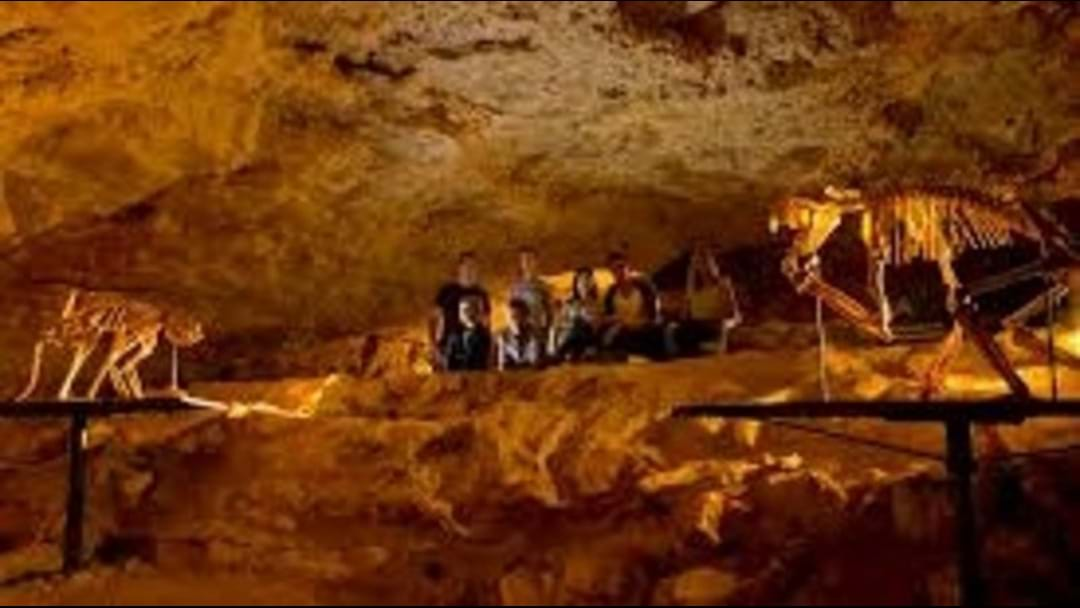 Naracoorte Caves now FREE for locals!