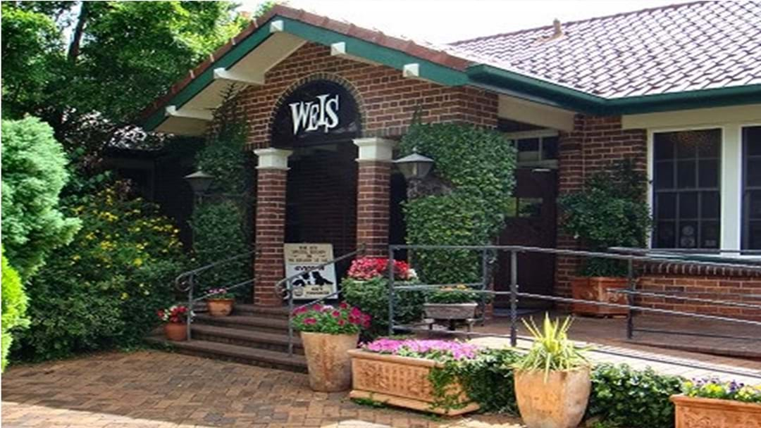 Time Capsule Discovered During Renovations at Weis Restaurant Site