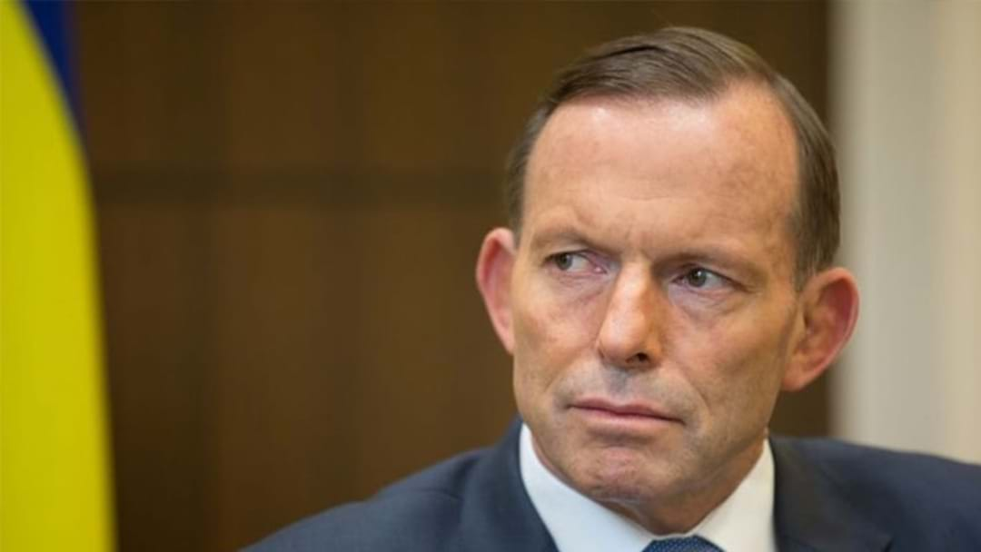 Tasmanian Man Pleads Guilty To Headbutting Tony Abbott