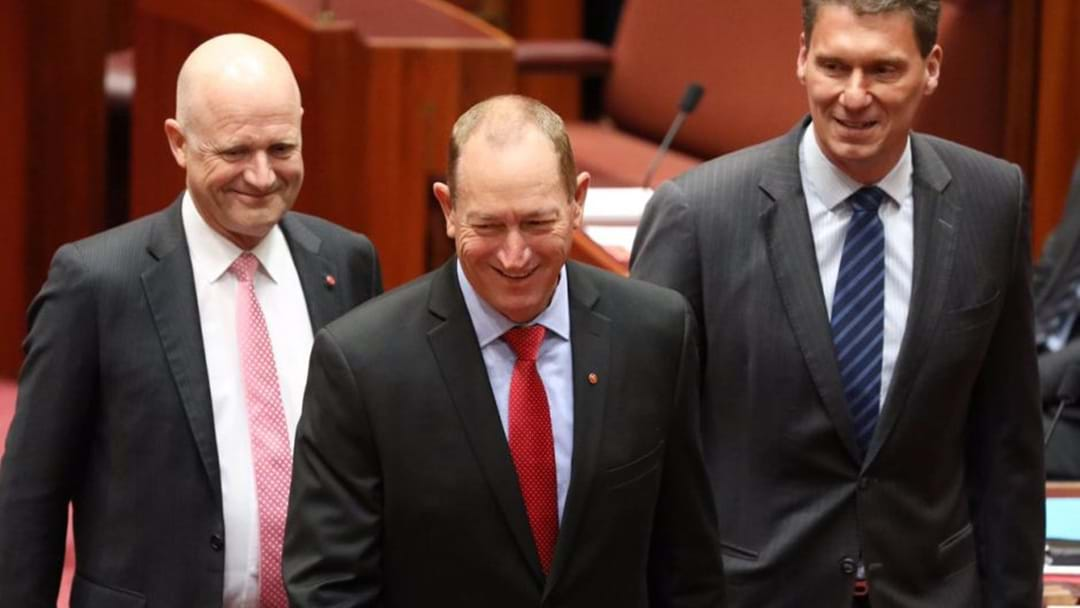 Fraser Anning Reckons Pauline Hanson Booted Him From One Nation