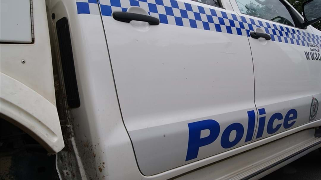 Police search for dual-cab ute after alleged hit and run