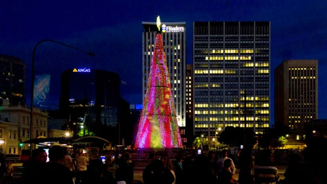 Don't Miss The The Lighting Of The Christmas Tree This Friday!