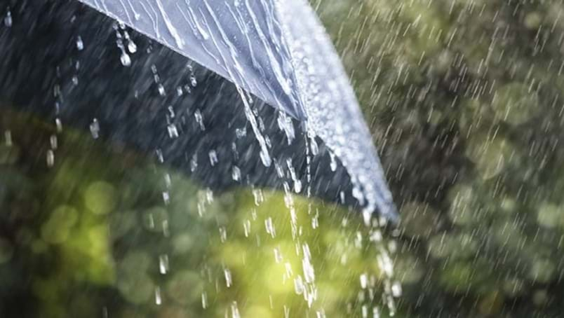 Article heading image for  GOOD NEWS: Torrential Rain For The Hunter