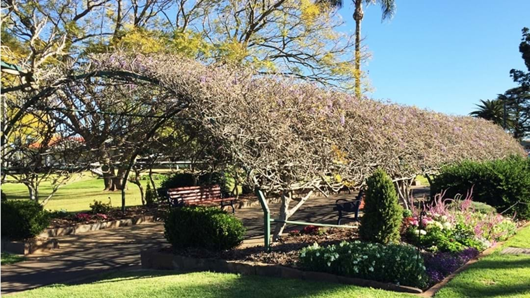 Garden City's Greenspace is Lacking – BIG time