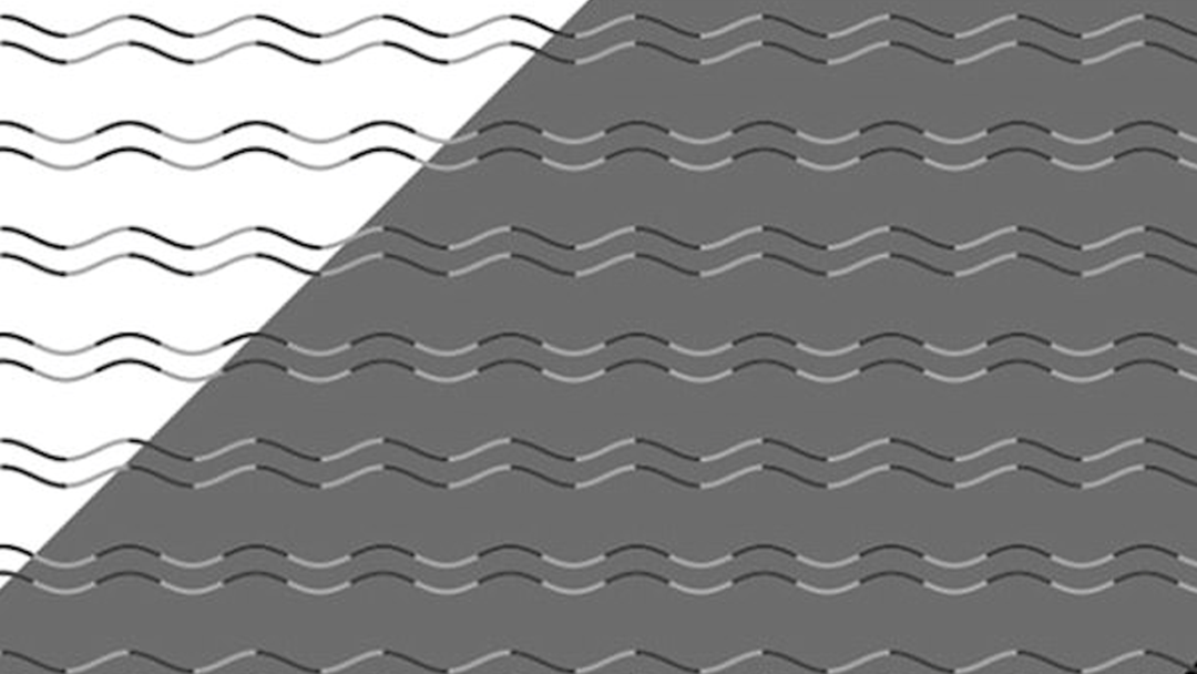 We Can't Make Sense Of This Bizarre Optical ILLUSION