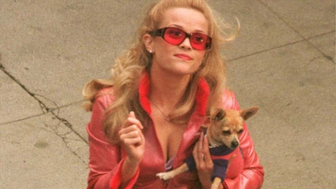 Reese Witherspoon's In Talks For Legally Blonde 3, Coz What, Like It's Hard?