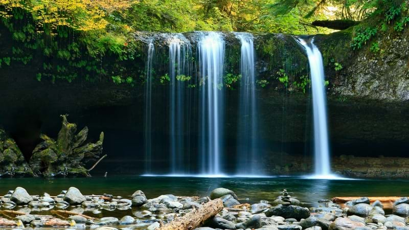 Article heading image for 5 Gold Coast Waterfalls That'll Get You Outta Town And Into Nature
