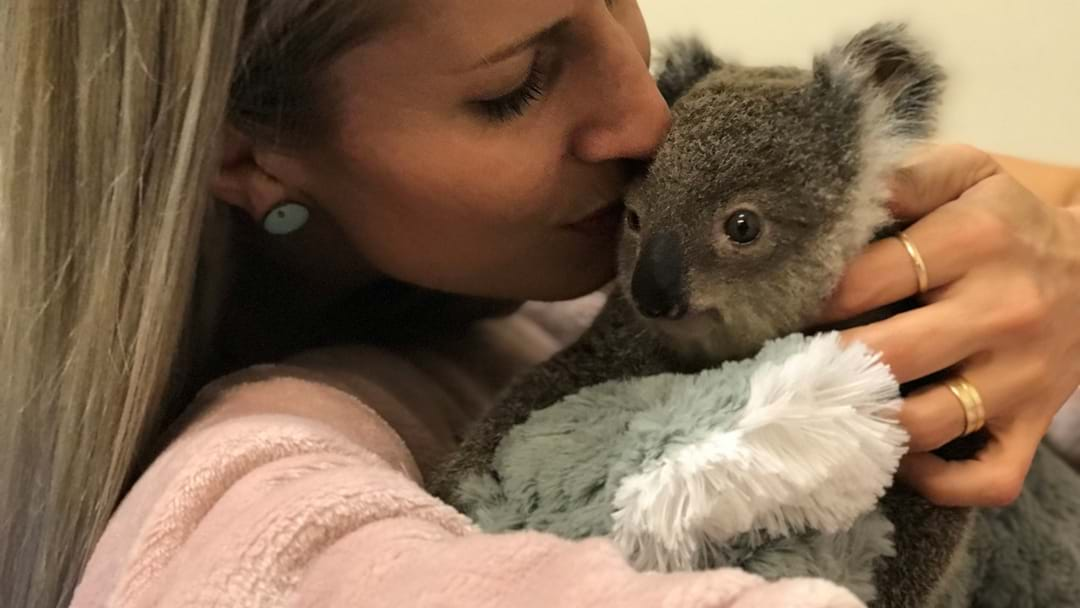 This Adorable Baby Koala Buddy Pretty Much Wins The Internet