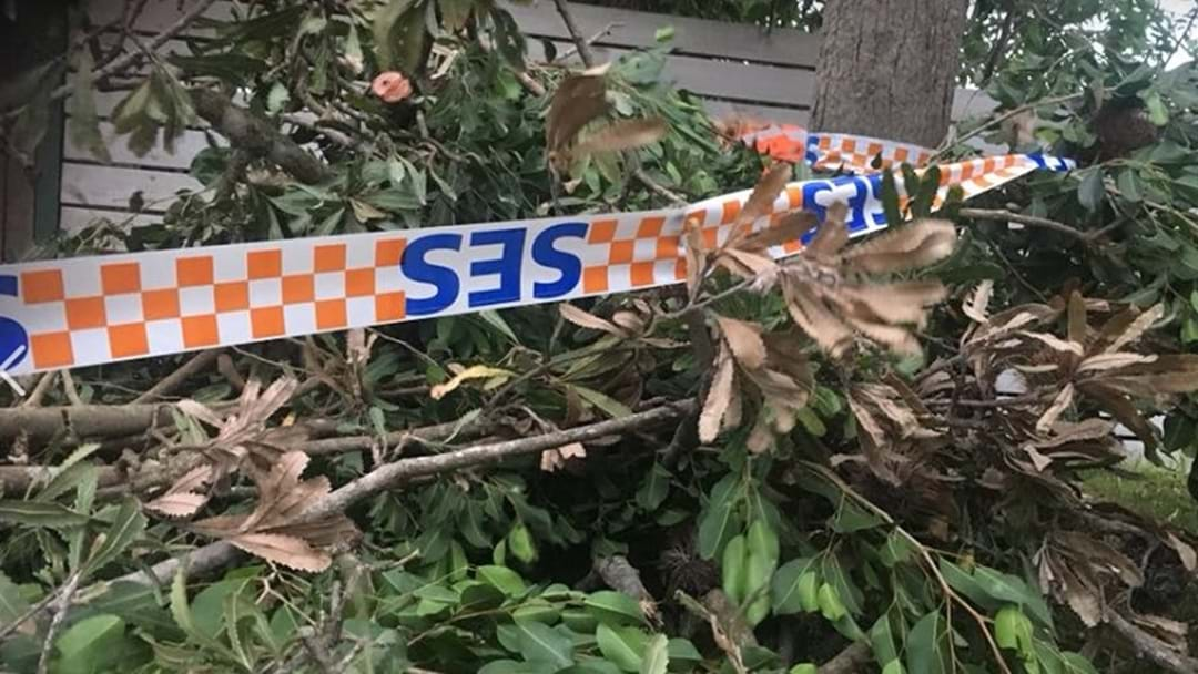 SES Responds To 52 Calls For Assistance Across The Coast In Two Days