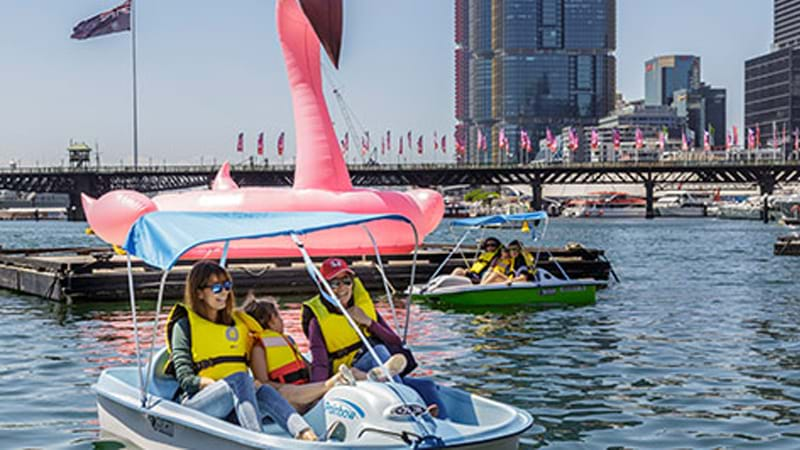 Article heading image for You Can Now Hire A Pedal Boat Around Darling Harbour