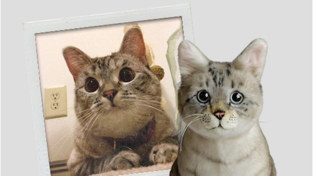 You Can Get EXACT Plush Toy Replicas Of Your Pets!