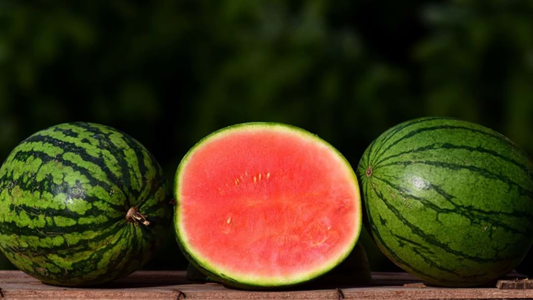 Why Wearing Watermelon Will Save Your Skin And Wallet