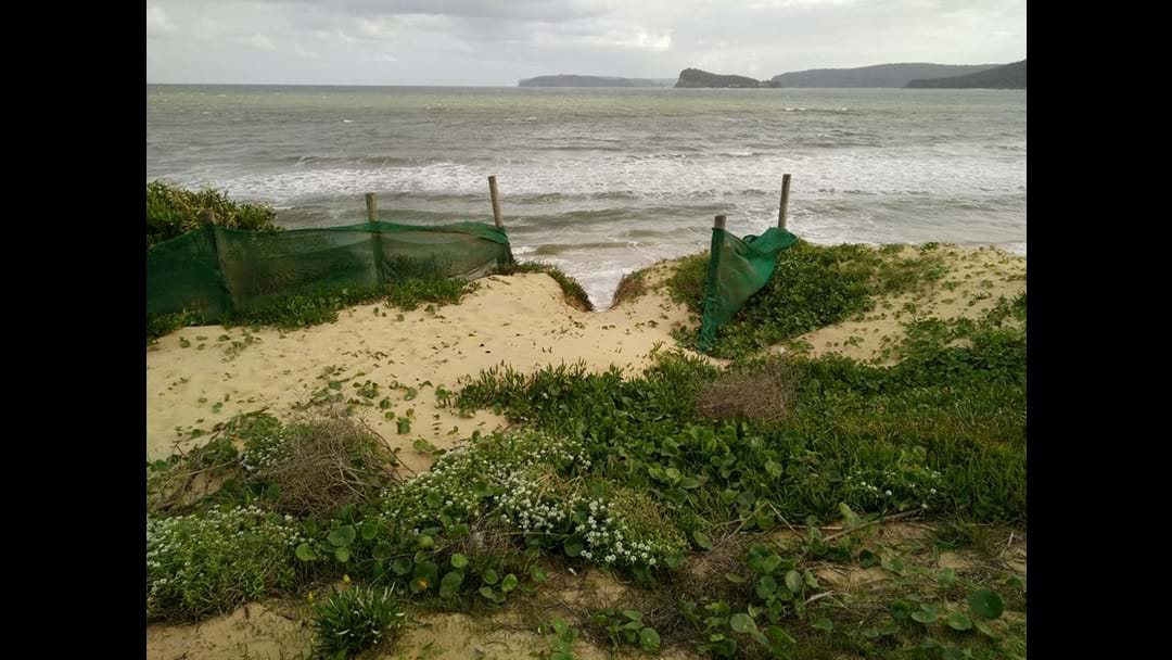 Council to tackle Umina erosion