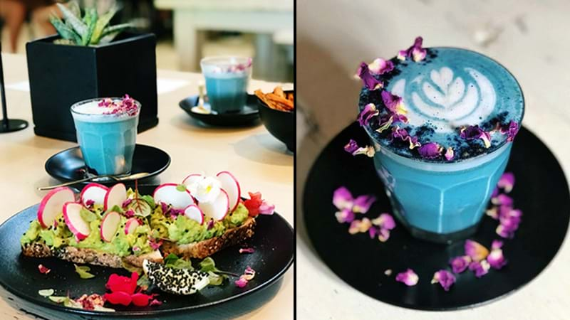 Article heading image for The Most Picture Perfect Café In Sydney Is About To Become Your Newest Obsession!