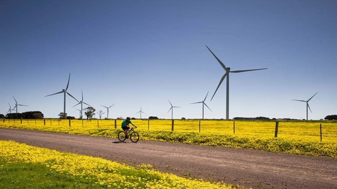 Wind Farm Generates Jobs Now - Energy Soon