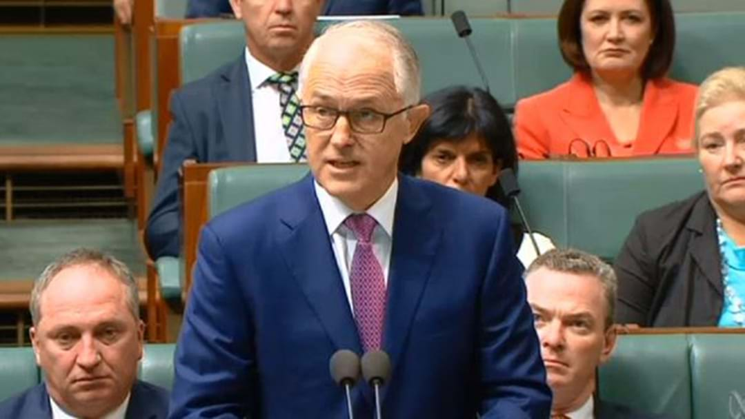 Malcolm Turnbull Promises National Apology To Abuse Survivors