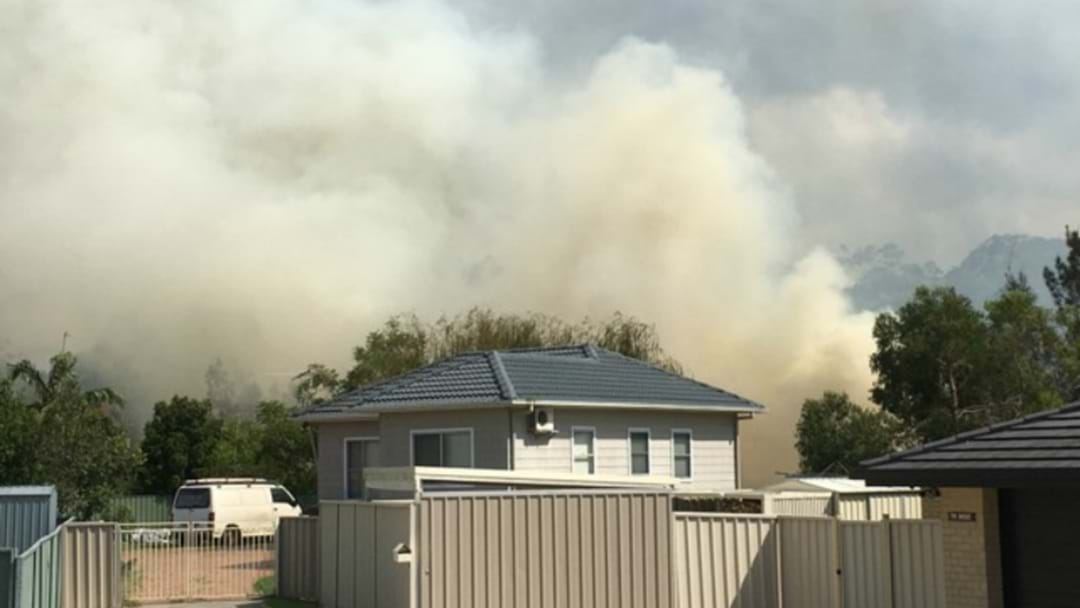 WATCH: Firefighters Tackle Windale Bushfire
