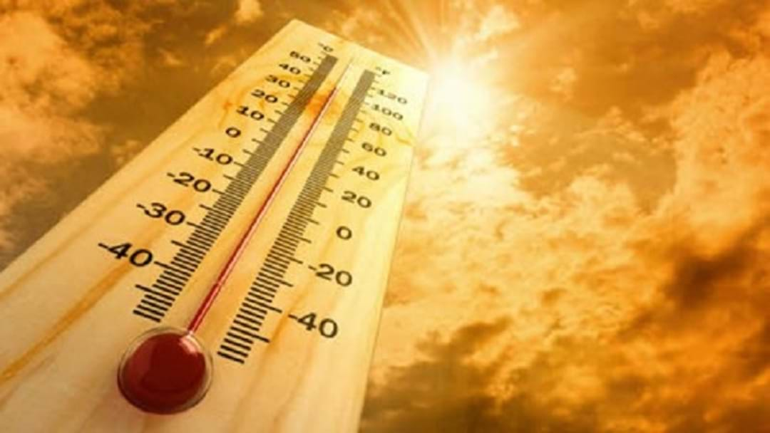 Health Warning As Wagga Swelters