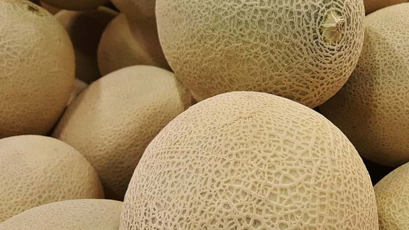 Rockmelon recalled after listeria outbreak leaves two dead