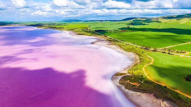 Article heading image for Five Pink Lakes In South Australia To Add To Your Bucket List!