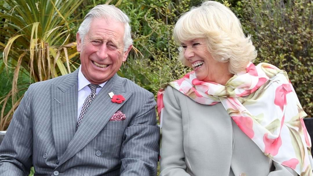 EXCLUSIVE: Prince Charles Wrecks Our Reporter With Amazingly Unintentional Toilet Joke