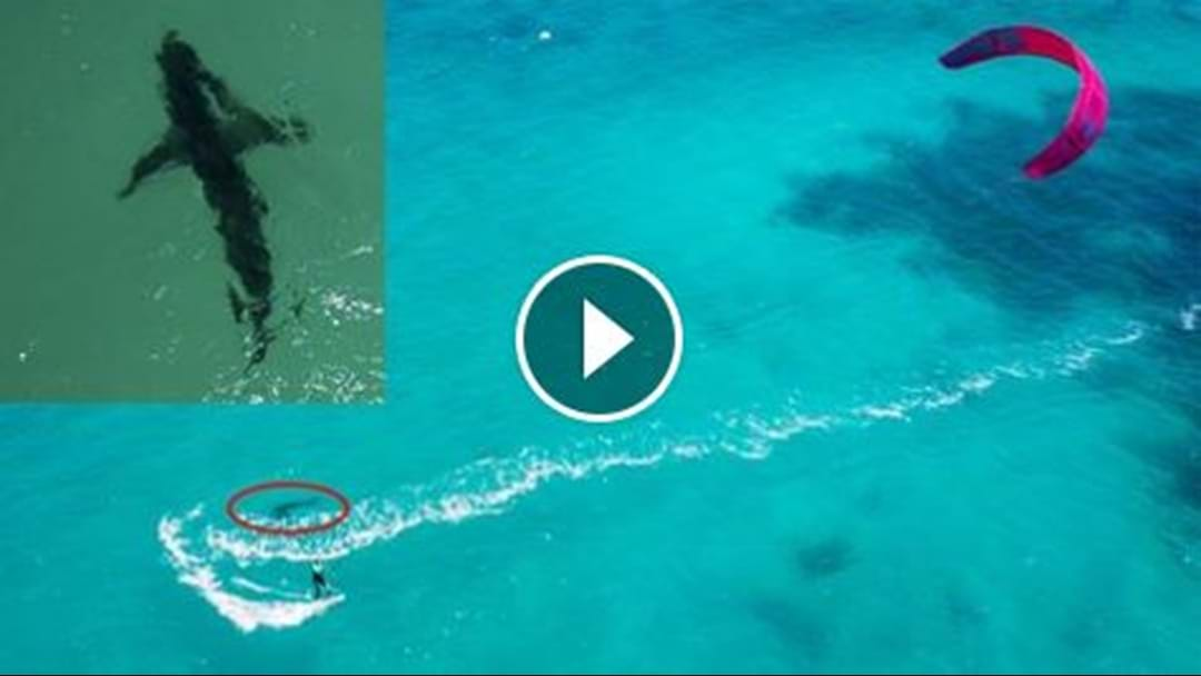 French Kite Surfer Stalked by Great White!