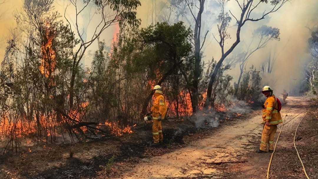 Major Bushfire Updates For Sydney Today