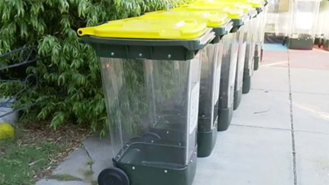 Perth Councils To Introduce Transparent Bins Next Week