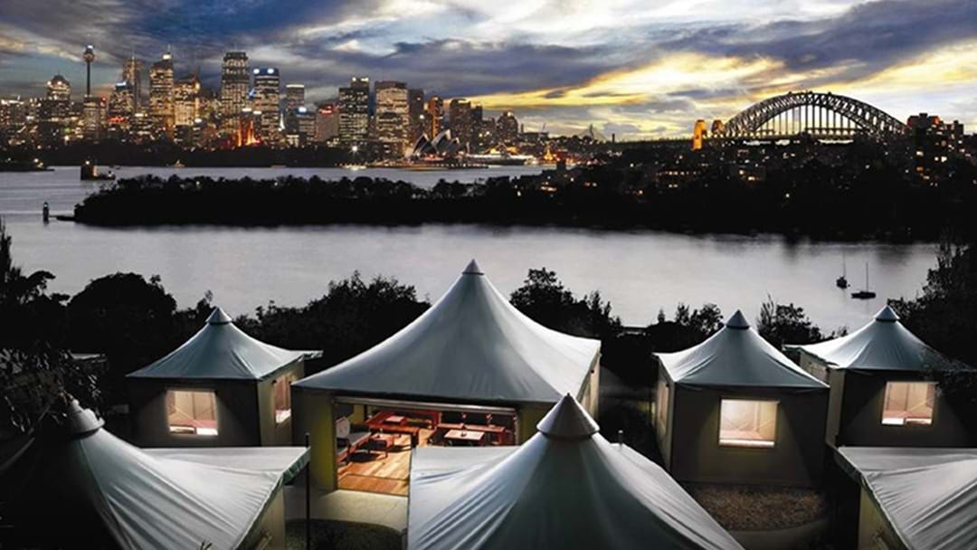 Here's How You Can Win A Free Glamping Experience At Taronga Zoo's Roar & Snore