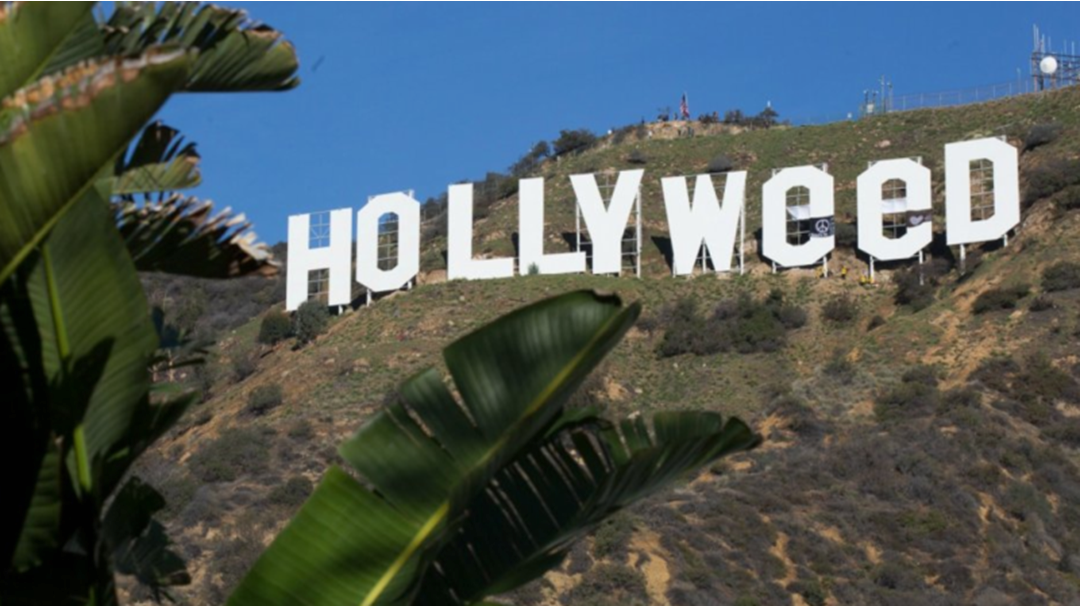 Wish You Pulled Off THAT Hollyweed Stunt?
