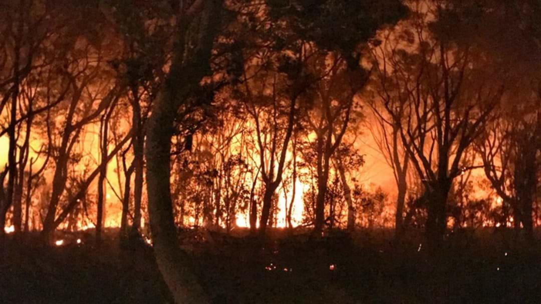 Discarded Ashes Spark Ballandean Bushfire